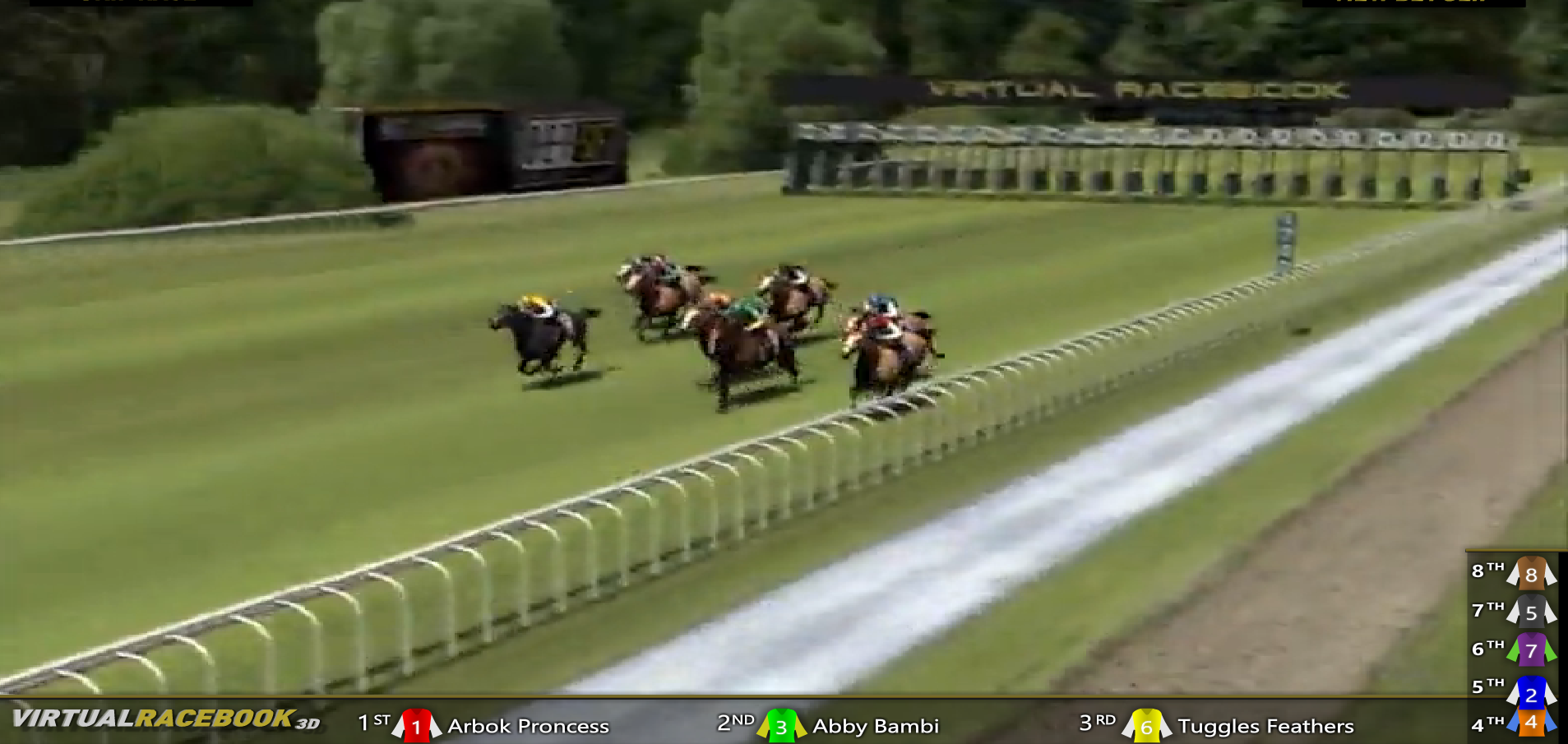 Horse racing screen shot